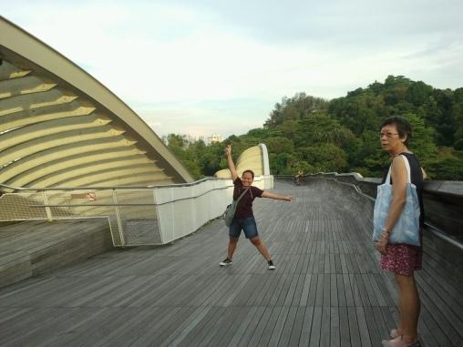 At the southern ridge bridge